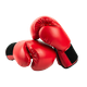 Boxing, Wrestling & Martial Arts